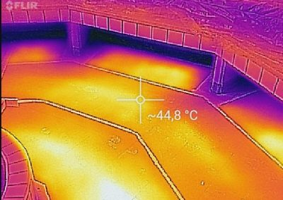 Thermal Image Proof Of BIPS In Sauna.