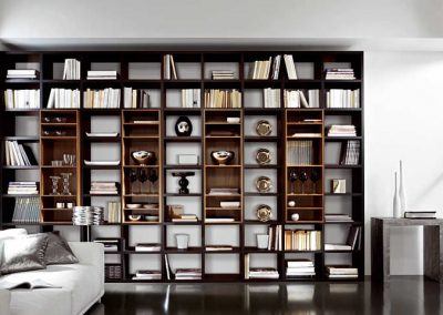 Two Style Stacking Feature Book Case & Library Design.