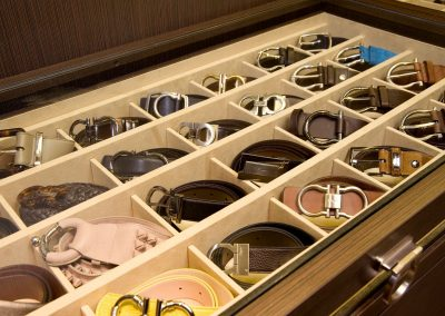 Ladies Belt Storage Design.